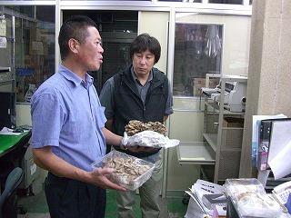 八百辰・三浦の朝採り野菜のパワー